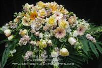 Apricot and Peach casket spray Funeral Flowers, Sympathy Flowers, Funeral Flower Arrangements from San Francisco Funeral Flowers.com Search for chinese funeral, sympathy funeral flower arrangements from our SanFranciscoFuneralFlowers.com website. Our funeral and sympathy arrangements include crosses, casket covers, hearts, wreaths on wood easels, coronas fúnebres, arreglos fúnebres, cruces para velorio, coronas para difunto, arreglos fúnebres, Florerias, Floreria, arreglos florales, corona funebre, coronas