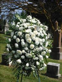 Peaceful tribute standing spray Funeral Flowers, Sympathy Flowers, Funeral Flower Arrangements from San Francisco Funeral Flowers.com Search for chinese funeral, sympathy funeral flower arrangements from our SanFranciscoFuneralFlowers.com website. Our funeral and sympathy arrangements include crosses, casket covers, hearts, wreaths on wood easels, coronas fúnebres, arreglos fúnebres, cruces para velorio, coronas para difunto, arreglos fúnebres, Florerias, Floreria, arreglos florales, corona funebre, coronas
