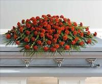 Carnation Casket Spray (CF073-11) Funeral Flowers, Sympathy Flowers, Funeral Flower Arrangements from San Francisco Funeral Flowers.com Search for chinese funeral, sympathy funeral flower arrangements from our SanFranciscoFuneralFlowers.com website. Our funeral and sympathy arrangements include crosses, casket covers, hearts, wreaths on wood easels, coronas fúnebres, arreglos fúnebres, cruces para velorio, coronas para difunto, arreglos fúnebres, Florerias, Floreria, arreglos florales, corona funebre, coronas
