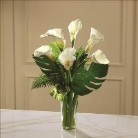 Always Adored Calla Lily Bouquet Funeral Flowers, Sympathy Flowers, Funeral Flower Arrangements from San Francisco Funeral Flowers.com Search for chinese funeral, sympathy funeral flower arrangements from our SanFranciscoFuneralFlowers.com website. Our funeral and sympathy arrangements include crosses, casket covers, hearts, wreaths on wood easels, coronas fúnebres, arreglos fúnebres, cruces para velorio, coronas para difunto, arreglos fúnebres, Florerias, Floreria, arreglos florales, corona funebre, coronas