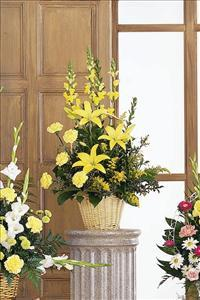 Monochromatic Yellow Funeral Flowers, Sympathy Flowers, Funeral Flower Arrangements from San Francisco Funeral Flowers.com Search for chinese funeral, sympathy funeral flower arrangements from our SanFranciscoFuneralFlowers.com website. Our funeral and sympathy arrangements include crosses, casket covers, hearts, wreaths on wood easels, coronas fúnebres, arreglos fúnebres, cruces para velorio, coronas para difunto, arreglos fúnebres, Florerias, Floreria, arreglos florales, corona funebre, coronas
