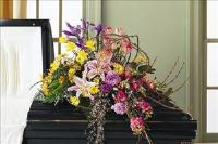 Mixed Half-Couch Casket Spray Funeral Flowers, Sympathy Flowers, Funeral Flower Arrangements from San Francisco Funeral Flowers.com Search for chinese funeral, sympathy funeral flower arrangements from our SanFranciscoFuneralFlowers.com website. Our funeral and sympathy arrangements include crosses, casket covers, hearts, wreaths on wood easels, coronas fúnebres, arreglos fúnebres, cruces para velorio, coronas para difunto, arreglos fúnebres, Florerias, Floreria, arreglos florales, corona funebre, coronas