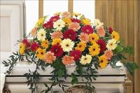 Gerbera Casket Spray Funeral Flowers, Sympathy Flowers, Funeral Flower Arrangements from San Francisco Funeral Flowers.com Search for chinese funeral, sympathy funeral flower arrangements from our SanFranciscoFuneralFlowers.com website. Our funeral and sympathy arrangements include crosses, casket covers, hearts, wreaths on wood easels, coronas fúnebres, arreglos fúnebres, cruces para velorio, coronas para difunto, arreglos fúnebres, Florerias, Floreria, arreglos florales, corona funebre, coronas