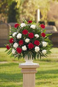 Red & White Carnation Basket Funeral Flowers, Sympathy Flowers, Funeral Flower Arrangements from San Francisco Funeral Flowers.com Search for chinese funeral, sympathy funeral flower arrangements from our SanFranciscoFuneralFlowers.com website. Our funeral and sympathy arrangements include crosses, casket covers, hearts, wreaths on wood easels, coronas fúnebres, arreglos fúnebres, cruces para velorio, coronas para difunto, arreglos fúnebres, Florerias, Floreria, arreglos florales, corona funebre, coronas