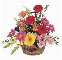 Low Wicker Basket Funeral Flowers, Sympathy Flowers, Funeral Flower Arrangements from San Francisco Funeral Flowers.com Search for chinese funeral, sympathy funeral flower arrangements from our SanFranciscoFuneralFlowers.com website. Our funeral and sympathy arrangements include crosses, casket covers, hearts, wreaths on wood easels, coronas fúnebres, arreglos fúnebres, cruces para velorio, coronas para difunto, arreglos fúnebres, Florerias, Floreria, arreglos florales, corona funebre, coronas