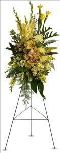 Sunshine Spray Funeral Flowers, Sympathy Flowers, Funeral Flower Arrangements from San Francisco Funeral Flowers.com Search for chinese funeral, sympathy funeral flower arrangements from our SanFranciscoFuneralFlowers.com website. Our funeral and sympathy arrangements include crosses, casket covers, hearts, wreaths on wood easels, coronas fúnebres, arreglos fúnebres, cruces para velorio, coronas para difunto, arreglos fúnebres, Florerias, Floreria, arreglos florales, corona funebre, coronas