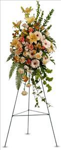 Sweet Remembrance Spray Funeral Flowers, Sympathy Flowers, Funeral Flower Arrangements from San Francisco Funeral Flowers.com Search for chinese funeral, sympathy funeral flower arrangements from our SanFranciscoFuneralFlowers.com website. Our funeral and sympathy arrangements include crosses, casket covers, hearts, wreaths on wood easels, coronas fúnebres, arreglos fúnebres, cruces para velorio, coronas para difunto, arreglos fúnebres, Florerias, Floreria, arreglos florales, corona funebre, coronas