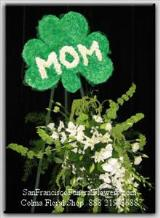 Green Carnation Shamrock MOM Floral Spray, Funeral Flowers, Sympathy Flowers, Funeral Flower Arrangements from San Francisco Funeral Flowers.com Search for sympathy and funeral flower arrangement ideas from our SanFranciscoFuneralFlowers.com website. Our funeral and sympathy arrangements include crosses, casket covers, hearts, wreaths on wood easels. Open 365 days and provide delivery everyday including Sunday delivery to funeral homes from San Francisco CA to San Mateo CA. San Francisco Flowers