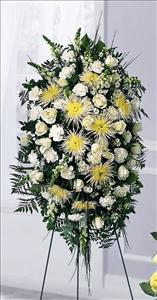 Eternal Light™ Standing Spray Funeral Flowers, Sympathy Flowers, Funeral Flower Arrangements from San Francisco Funeral Flowers.com Search for chinese funeral, sympathy funeral flower arrangements from our SanFranciscoFuneralFlowers.com website. Our funeral and sympathy arrangements include crosses, casket covers, hearts, wreaths on wood easels, coronas fúnebres, arreglos fúnebres, cruces para velorio, coronas para difunto, arreglos fúnebres, Florerias, Floreria, arreglos florales, corona funebre, coronas