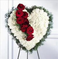 Bleeding Heart Funeral Flowers, Sympathy Flowers, Funeral Flower Arrangements from San Francisco Funeral Flowers.com Search for chinese funeral, sympathy funeral flower arrangements from our SanFranciscoFuneralFlowers.com website. Our funeral and sympathy arrangements include crosses, casket covers, hearts, wreaths on wood easels, coronas fúnebres, arreglos fúnebres, cruces para velorio, coronas para difunto, arreglos fúnebres, Florerias, Floreria, arreglos florales, corona funebre, coronas