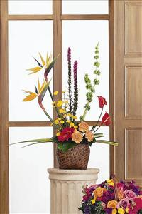 Tropical Style Basket Funeral Flowers, Sympathy Flowers, Funeral Flower Arrangements from San Francisco Funeral Flowers.com Search for chinese funeral, sympathy funeral flower arrangements from our SanFranciscoFuneralFlowers.com website. Our funeral and sympathy arrangements include crosses, casket covers, hearts, wreaths on wood easels, coronas fúnebres, arreglos fúnebres, cruces para velorio, coronas para difunto, arreglos fúnebres, Florerias, Floreria, arreglos florales, corona funebre, coronas