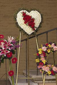 White Heart with Red Carnations Funeral Flowers, Sympathy Flowers, Funeral Flower Arrangements from San Francisco Funeral Flowers.com Search for chinese funeral, sympathy funeral flower arrangements from our SanFranciscoFuneralFlowers.com website. Our funeral and sympathy arrangements include crosses, casket covers, hearts, wreaths on wood easels, coronas fúnebres, arreglos fúnebres, cruces para velorio, coronas para difunto, arreglos fúnebres, Florerias, Floreria, arreglos florales, corona funebre, coronas