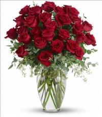 Forever Beloved Funeral Flowers, Sympathy Flowers, Funeral Flower Arrangements from San Francisco Funeral Flowers.com Search for chinese funeral, sympathy funeral flower arrangements from our SanFranciscoFuneralFlowers.com website. Our funeral and sympathy arrangements include crosses, casket covers, hearts, wreaths on wood easels, coronas fúnebres, arreglos fúnebres, cruces para velorio, coronas para difunto, arreglos fúnebres, Florerias, Floreria, arreglos florales, corona funebre, coronas
