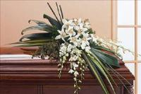 Half-Couch Orchid Spray Funeral Flowers, Sympathy Flowers, Funeral Flower Arrangements from San Francisco Funeral Flowers.com Search for chinese funeral, sympathy funeral flower arrangements from our SanFranciscoFuneralFlowers.com website. Our funeral and sympathy arrangements include crosses, casket covers, hearts, wreaths on wood easels, coronas fúnebres, arreglos fúnebres, cruces para velorio, coronas para difunto, arreglos fúnebres, Florerias, Floreria, arreglos florales, corona funebre, coronas
