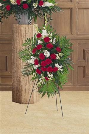 Cherished Moments Spray Funeral Flowers, Sympathy Flowers, Funeral Flower Arrangements from San Francisco Funeral Flowers.com Search for chinese funeral, sympathy funeral flower arrangements from our SanFranciscoFuneralFlowers.com website. Our funeral and sympathy arrangements include crosses, casket covers, hearts, wreaths on wood easels, coronas fúnebres, arreglos fúnebres, cruces para velorio, coronas para difunto, arreglos fúnebres, Florerias, Floreria, arreglos florales, corona funebre, coronas